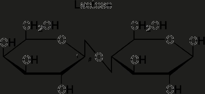 Lactose(lac)
