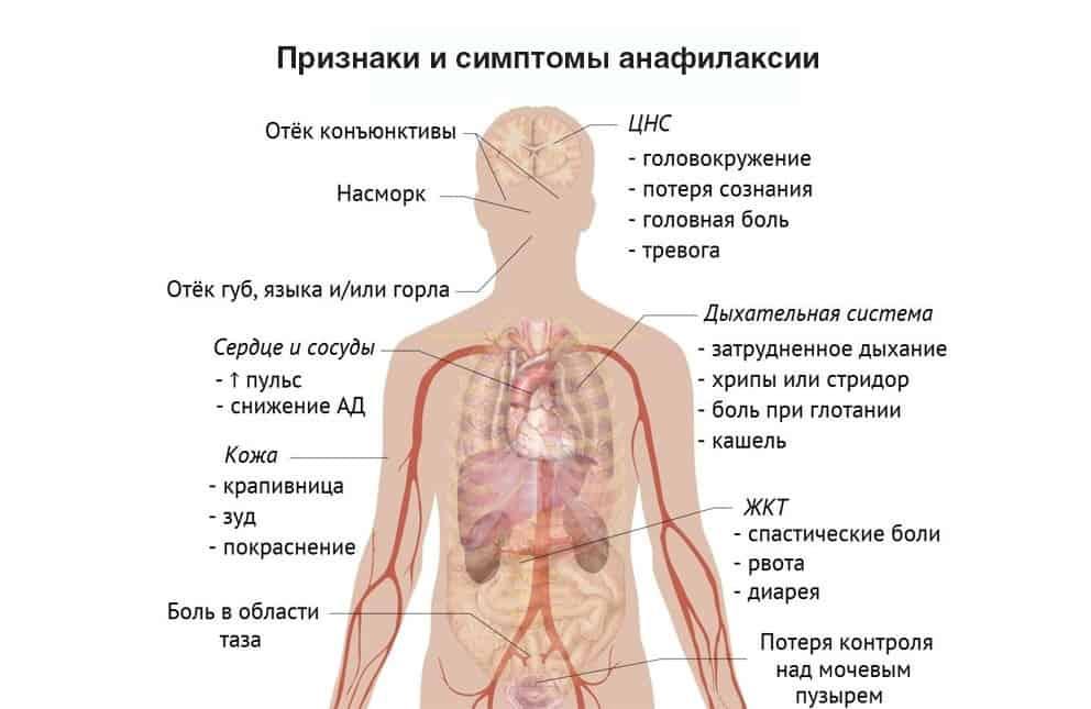 Ozn_rus