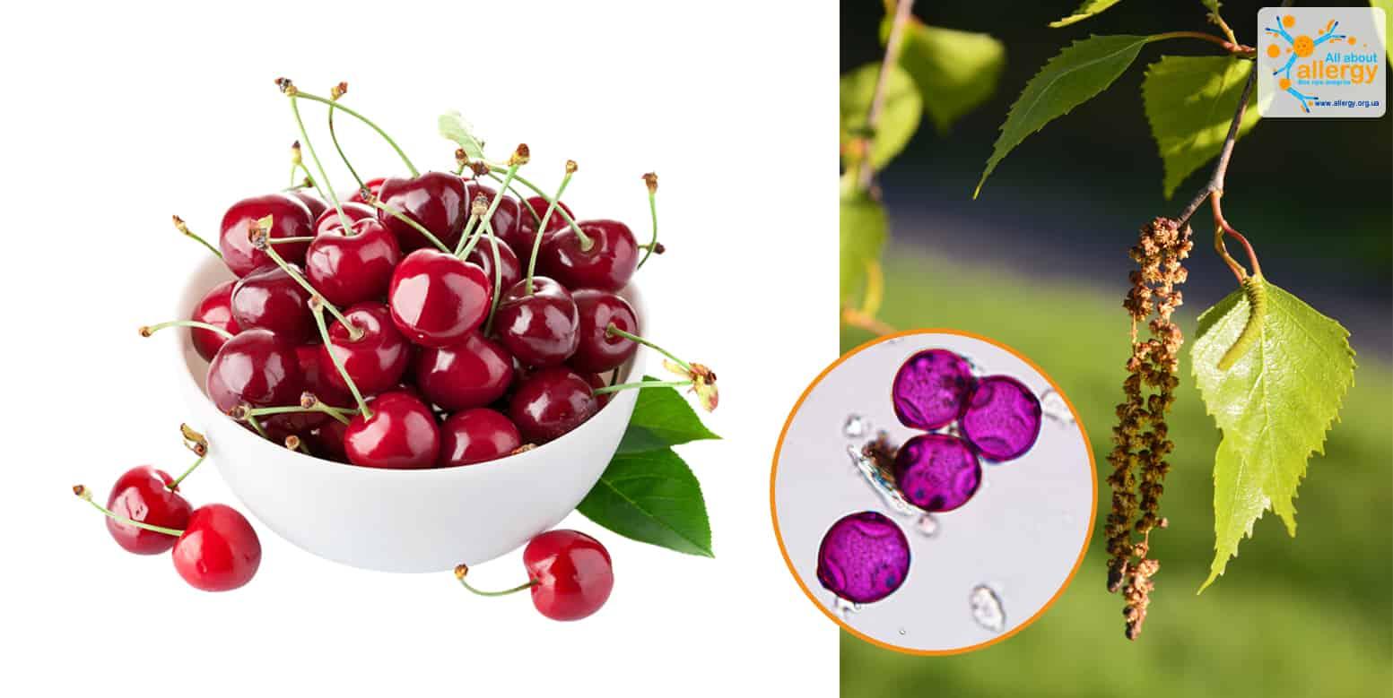 cherry&bettula