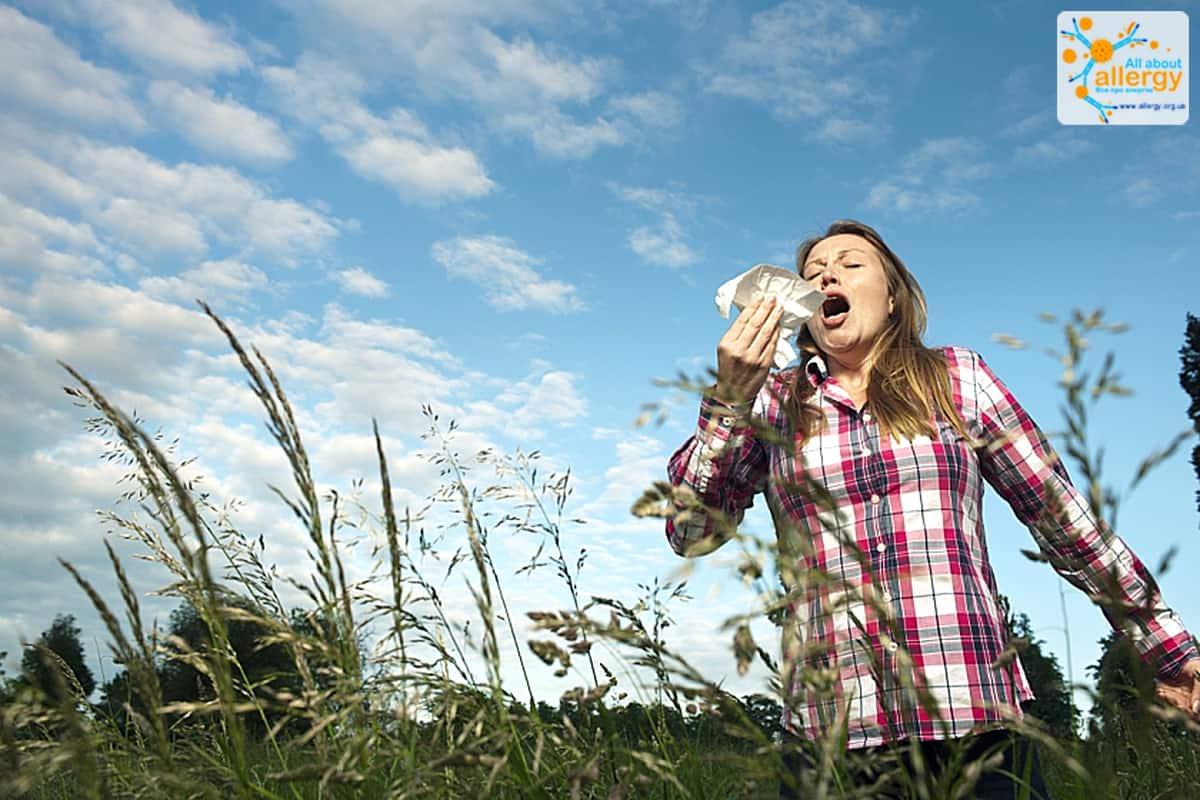 Факторы аллергии: пыльца злаков