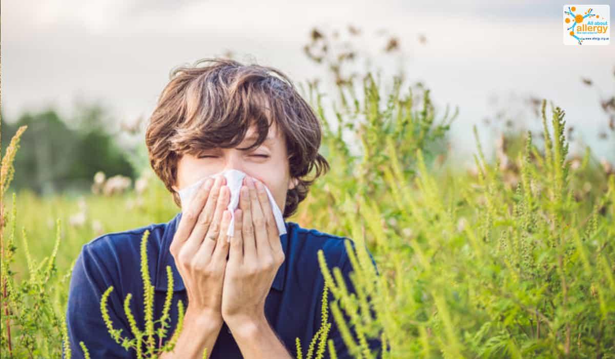 Чутливість до пилку симптоми