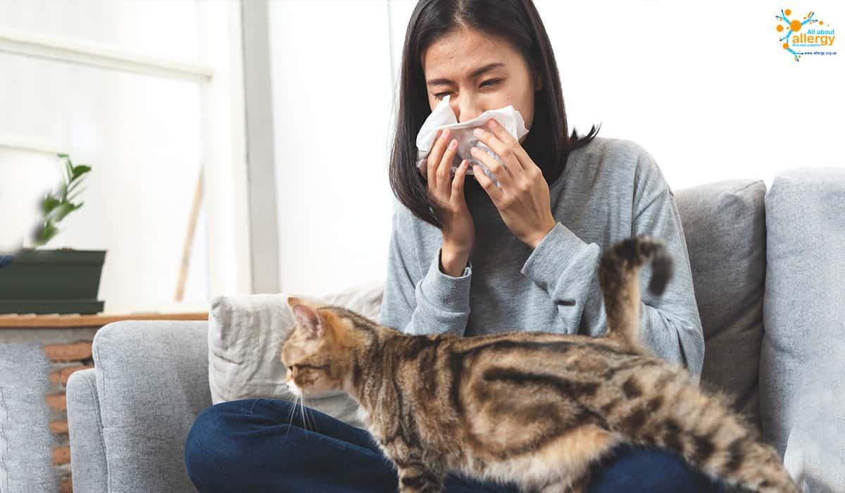 Що може викликати алергічні реакції? Домашні тварини