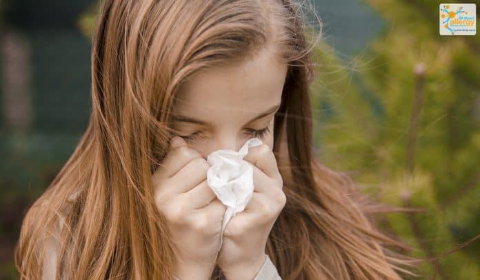 цілорічна алергия
